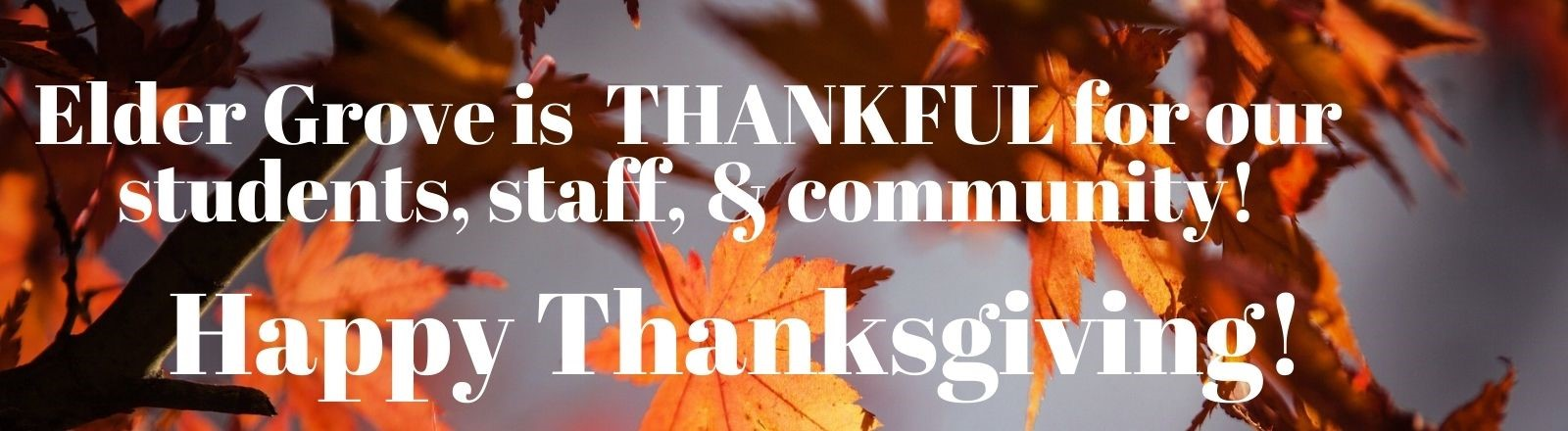 Elder Grove is Thankful for our students, staff, and community. Happy Thanksgiving! This has a photo of leaves behind it.
